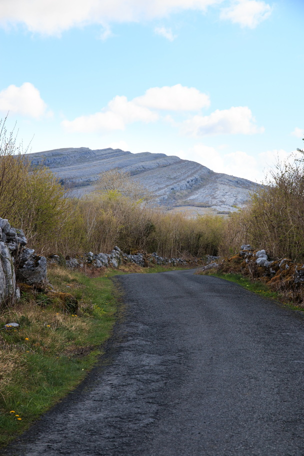 Ireland-1537-Heading into The Burren National Park.
